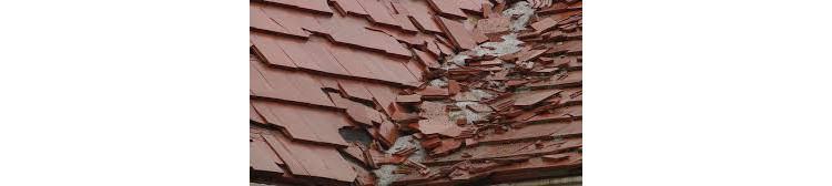 2 популярные категории крыши, которые могут неожиданно подвести вас